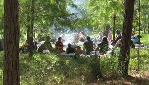 Ayahuasca retreat review