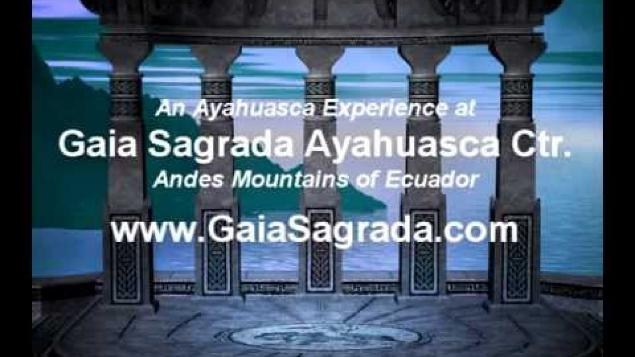 Shelly's Ayahuasca Experience – Gaia Sagrada Retreats