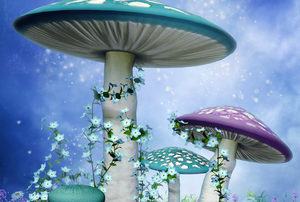 magic mushroom retreat