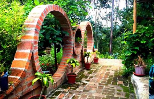 gaia sagrada circle garden ayahuasca retreats